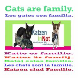 Art Print - Poster - Cats Are Family 101 - by Andreas Klamm