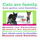 show  Cats Are Family 101 by Andreas Klamm Click to find out more...